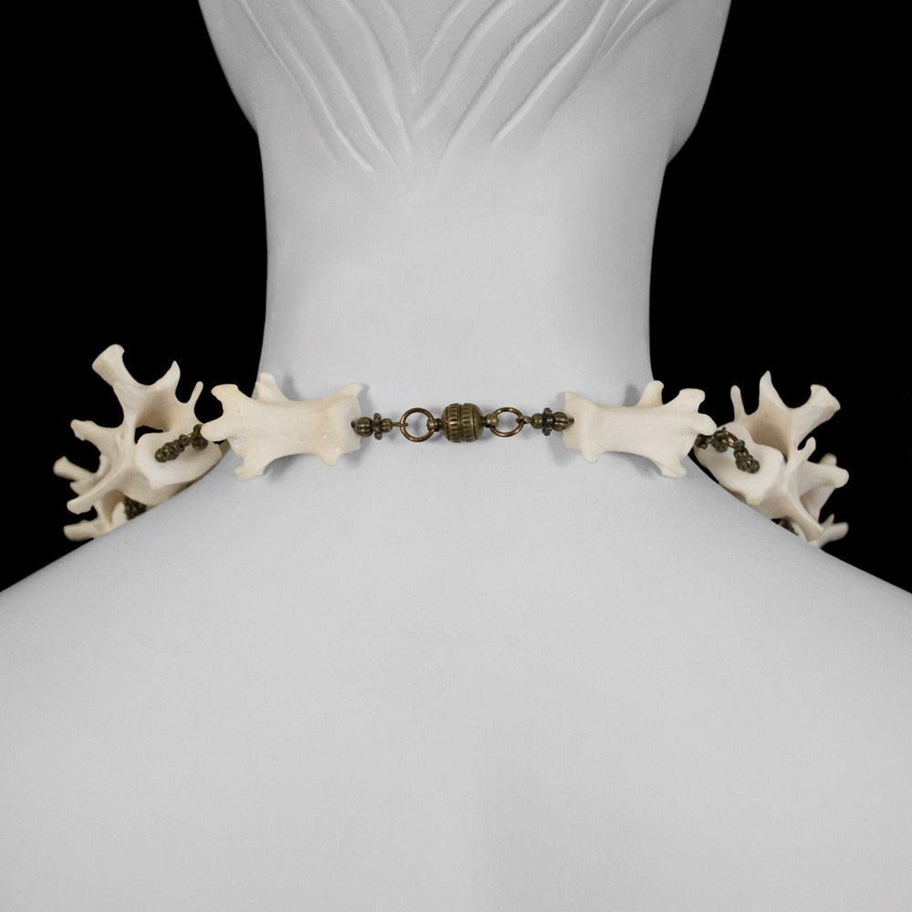 "Image of ""Marija"" Otter Bone Necklace"
