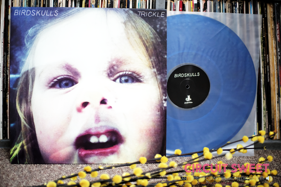 Image of Birdskulls - Trickle LP