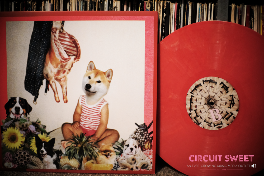 Image of Lingua Nada - Snuff LP