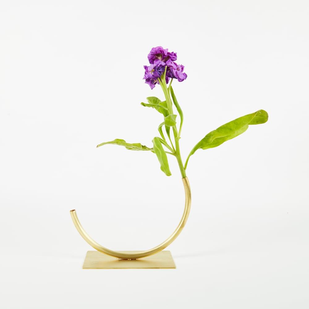 Image of Vase 565 - Best Practice Vase
