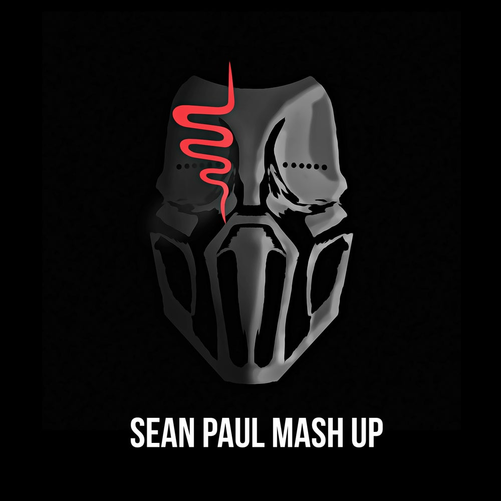 Image of Sean Paul Mash Up - Sickick