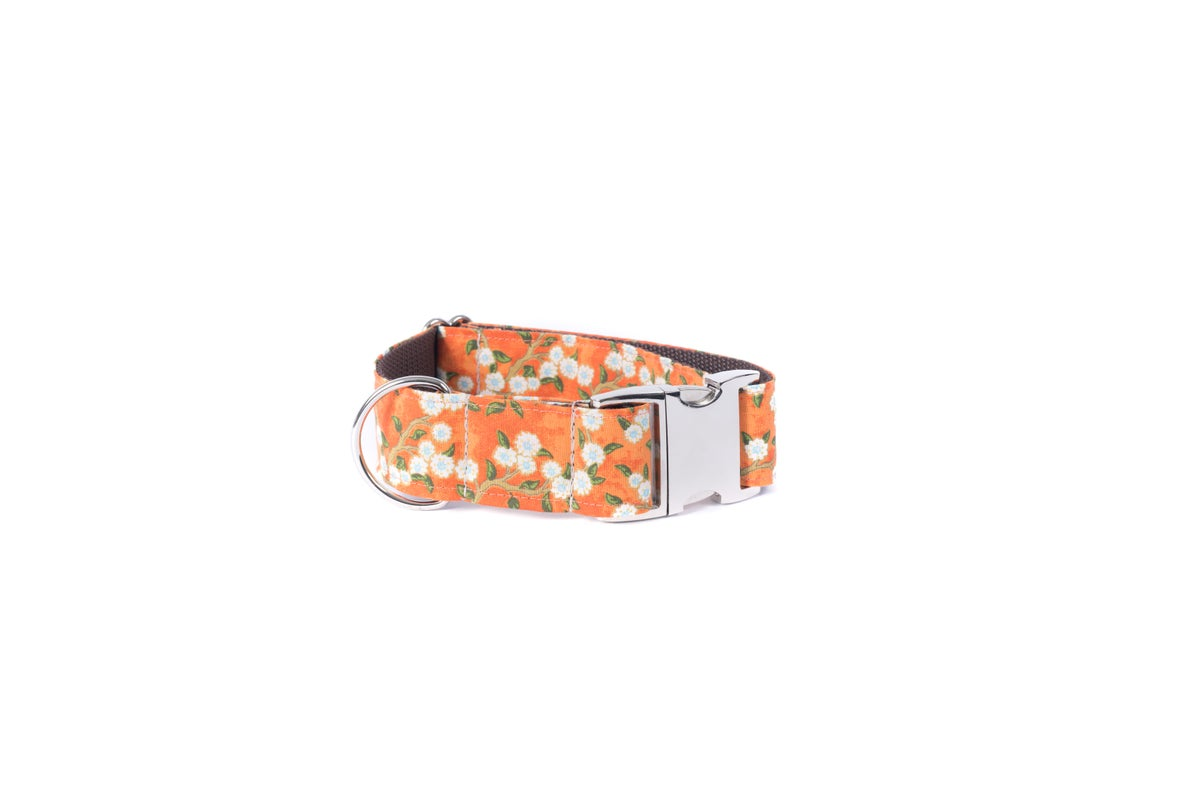 Adeline Cherry Blossoms Dog Collar