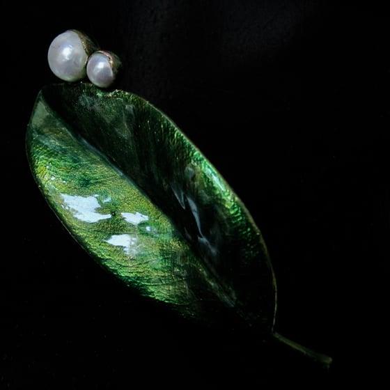 Image of SPECIMEN Magnolia grandiflora I brooch