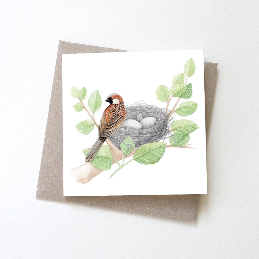 Image of Nest