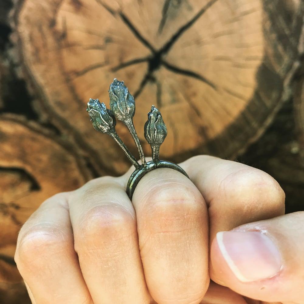 Image of Black Rose Rings, RAM931-2R