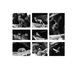 Image of Rewild Super Size Prints