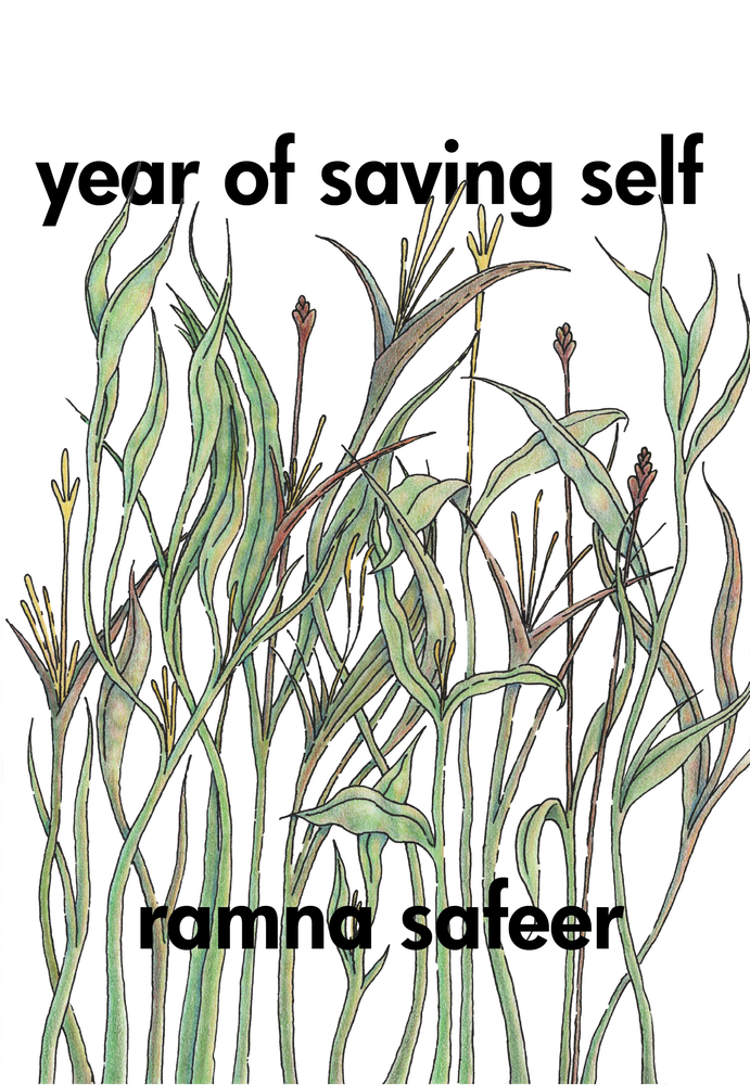 Image of Year of Saving Self by Ramna Safeer