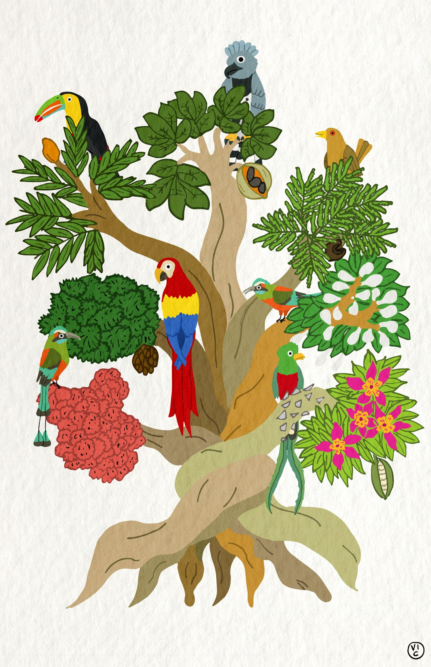 Image of Central American Tree Poster