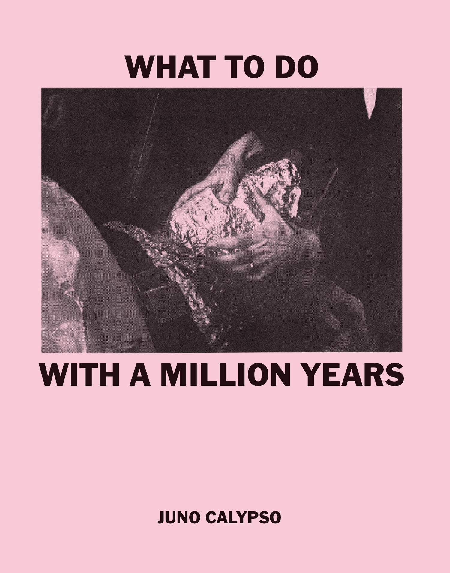 Image of WHAT TO DO WITH A MILLION YEARS