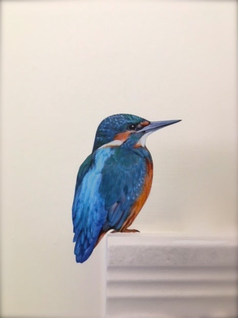 Image of Flash the Kingfisher ~ Wall decal