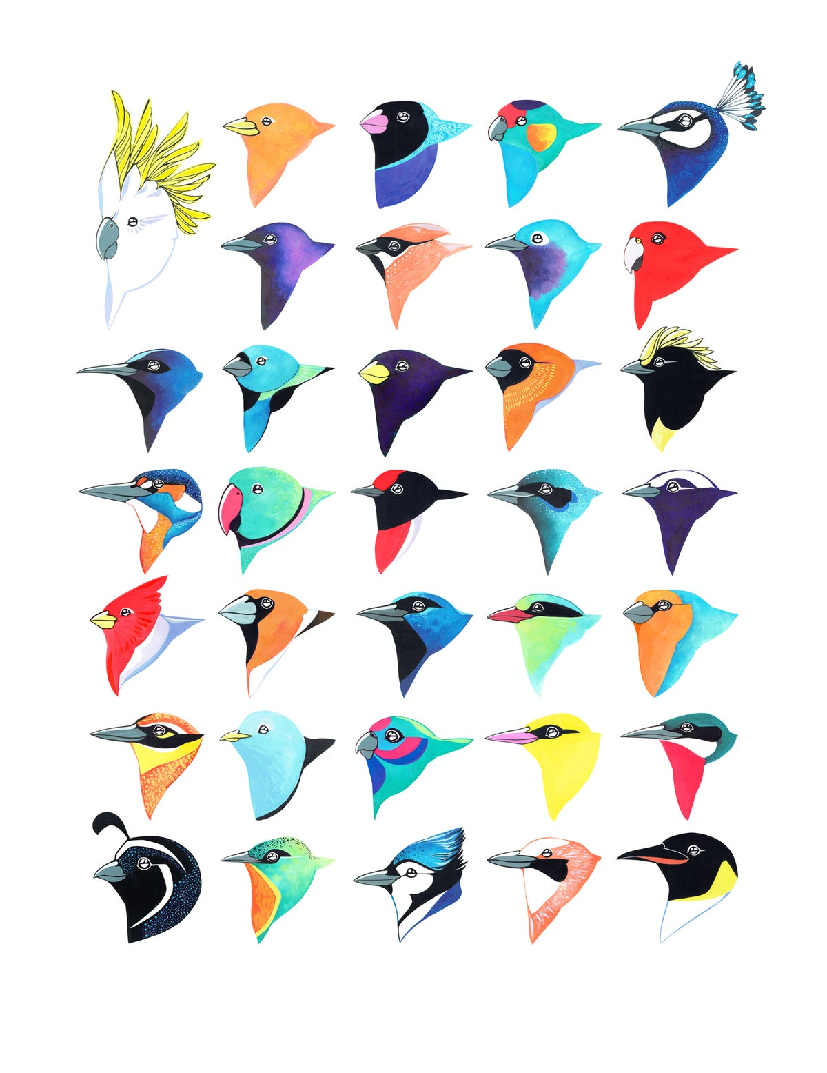 Image of Thirty-Four Birds