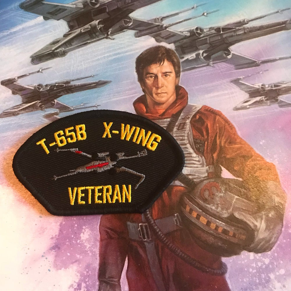 Image of X-Wing Veteran