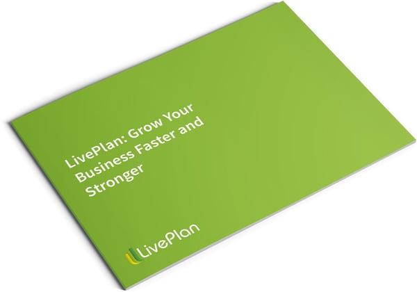 Image of LivePlan Brochure Design