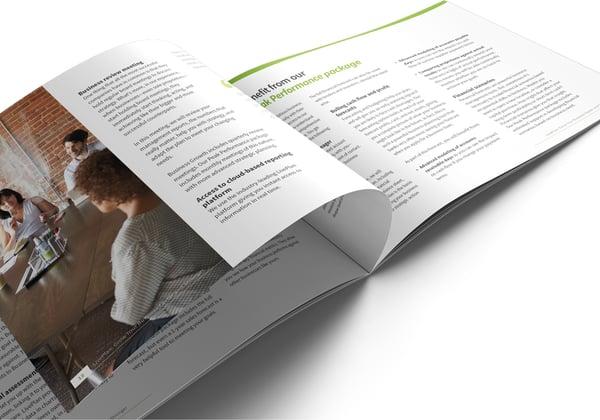 Image of LivePlan Brochure Print