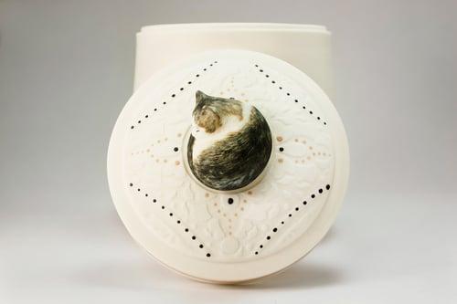 Image of Maine Coon, Persian, Ragdoll Cat Custom Pet Urn