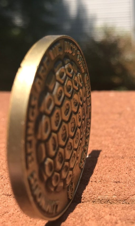 Image of the BALANCE medallion