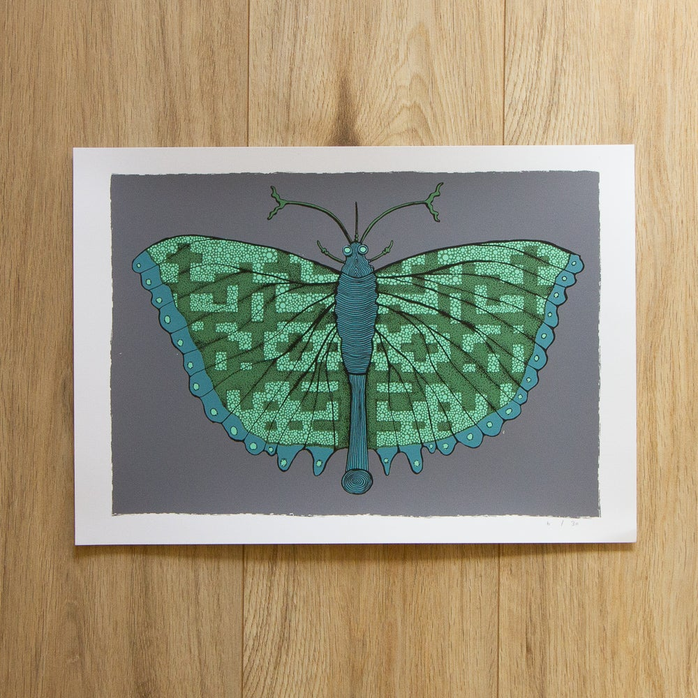 Image of 'Patterned Butterfly' Screen Print