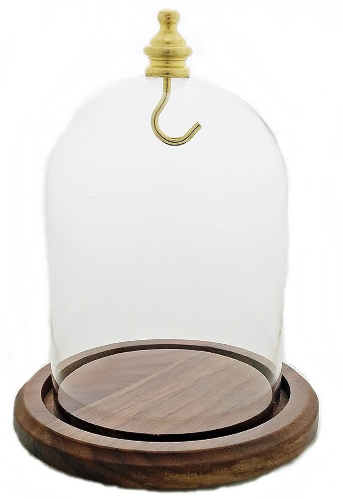 Image of Dueber Pocket Watch Glass Display Dome with Gold Knob & Hook, Real Walnut Base 3″x4″ DBR31WDH