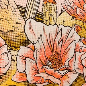 Image of Cactus Flowers