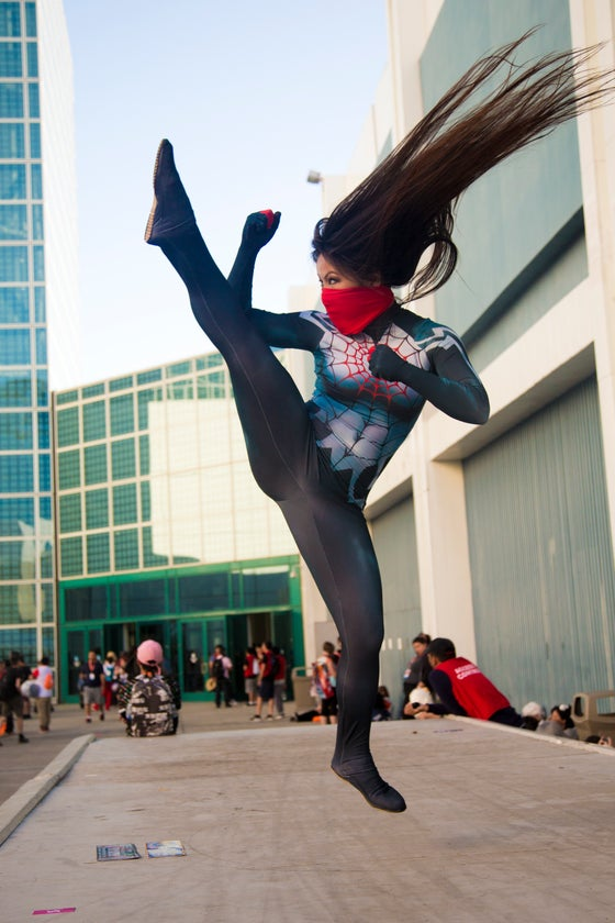 Image of Silk Kick