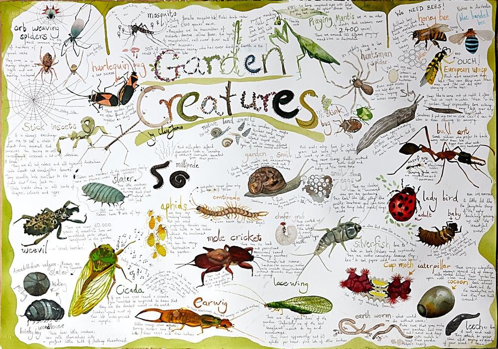 Image of Garden Creatures