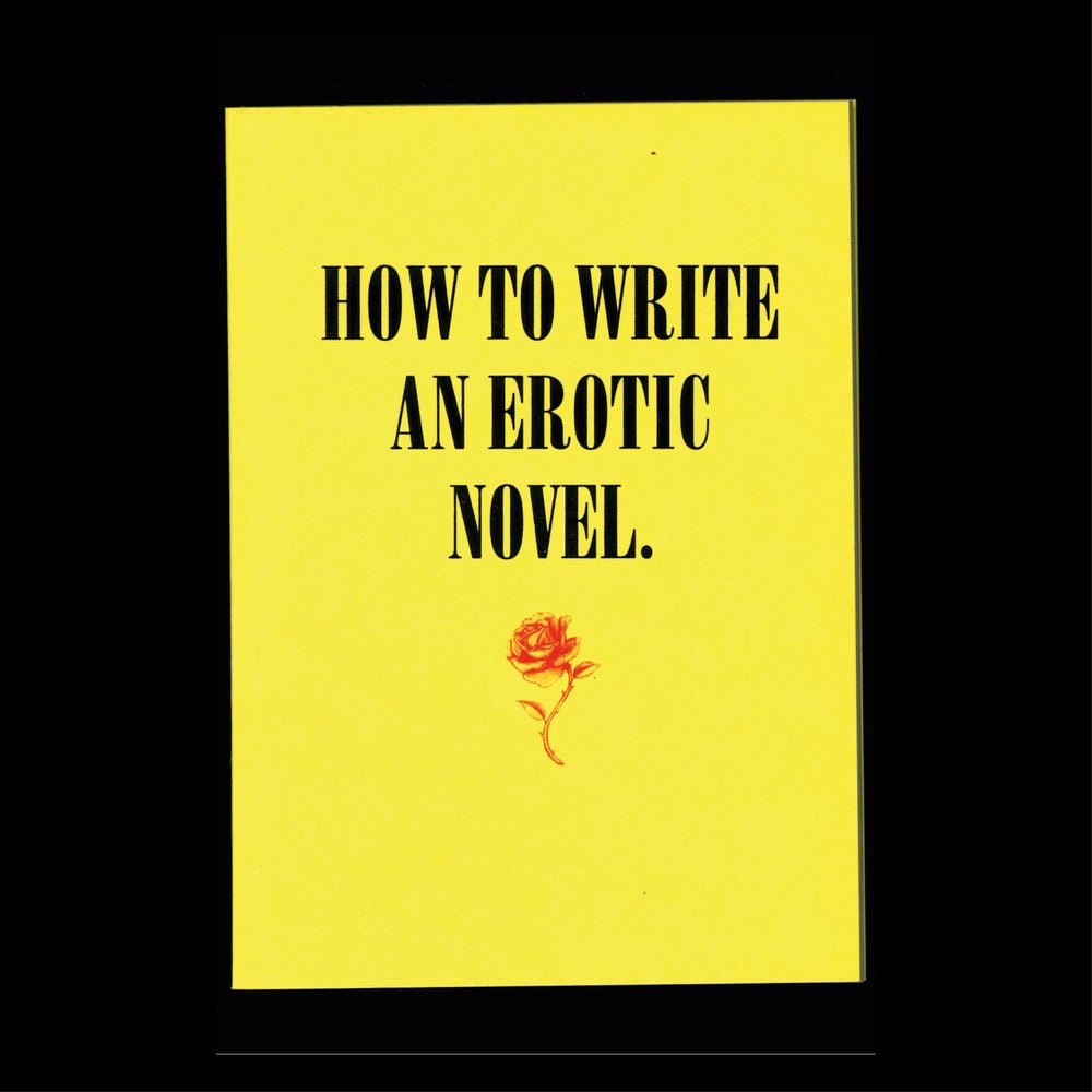Image of How to Write an Erotic Novel
