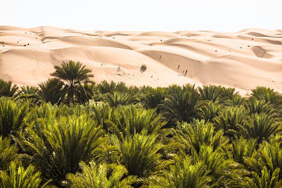 Image of Al Wasil