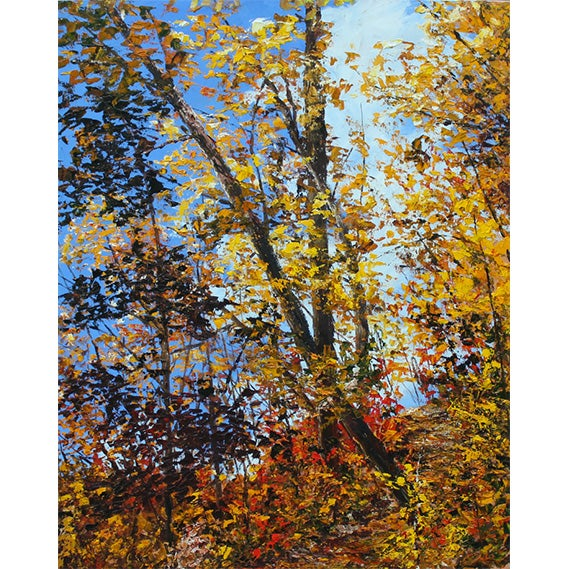 Image of - Through Autumn -