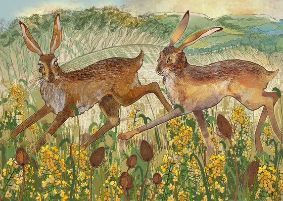 Image of Clent Hares