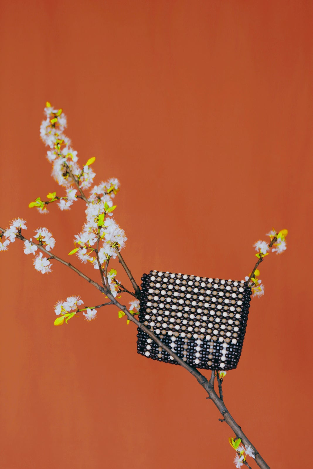 Image of Brown Maeve Clutch