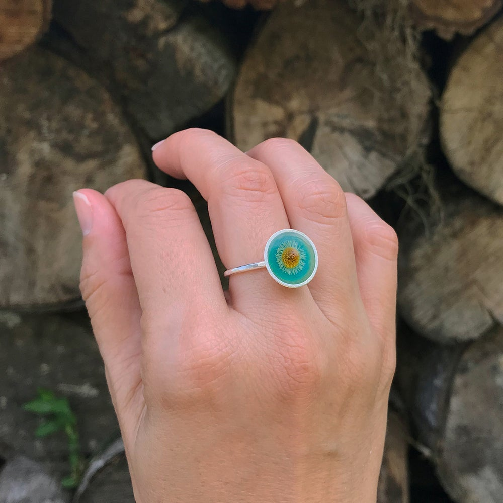 Image of Sprout Rings