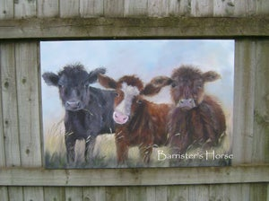 Image of 'THREE AMIGOS' ORIGINAL ACRYLIC ON CHUNKY CANVAS COW PAINTING