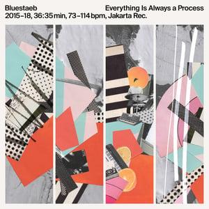 Image of Bluestaeb - Everything Is Always A Process - LP (JAKARTA)