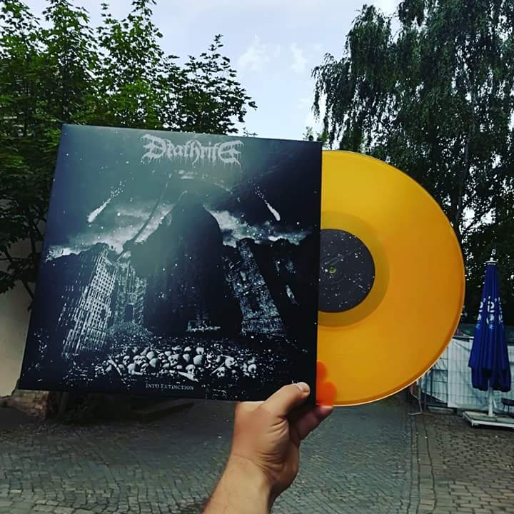 Image of Into Extinction LP