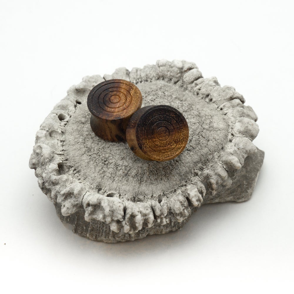 Image of Solid Ironwood Ear Plugs
