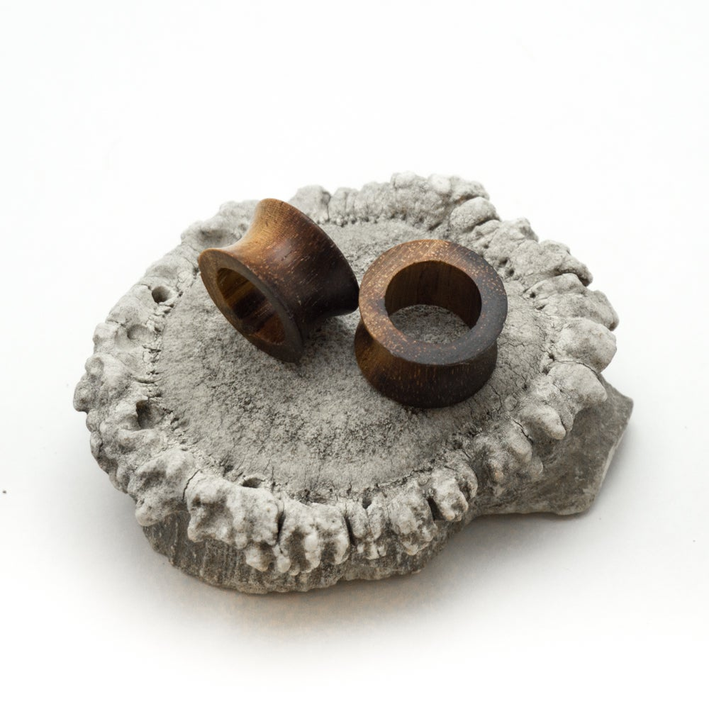 Image of Hollow Ironwood Ear Plugs