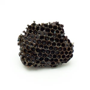 Image of Dark Copper Wasp Nest Display