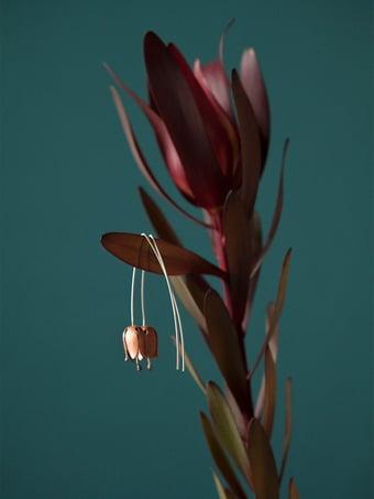 Image of calicanto orecchini