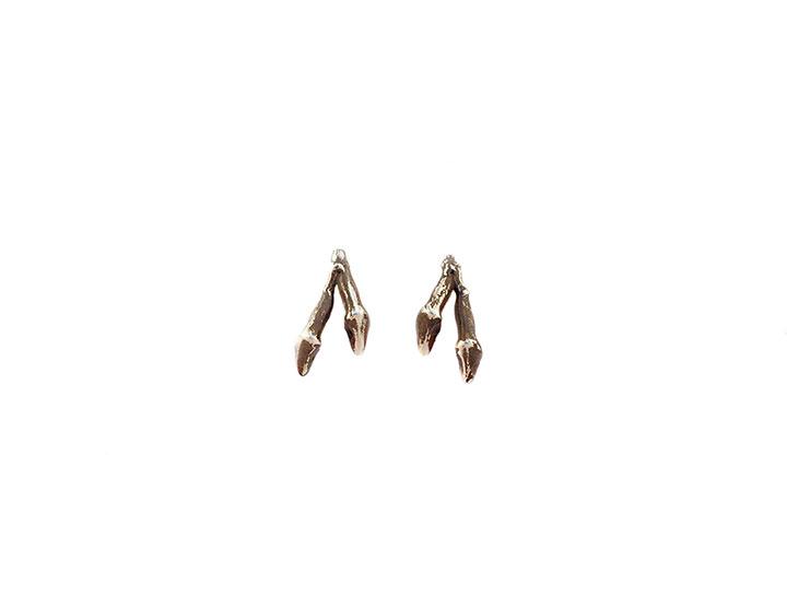 Image of Coyote Tooth Stud Earrings