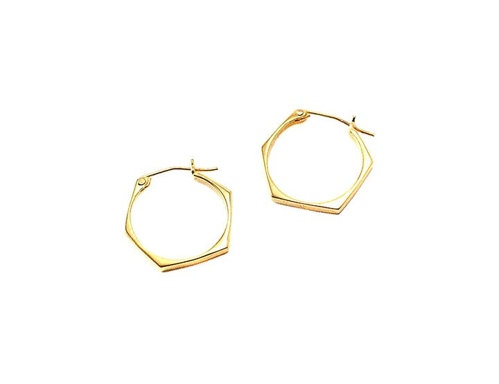 Image of nut hoop earrings