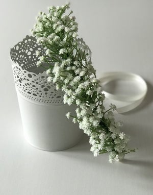 Image of EXTRA THICK GYPSOPHILA