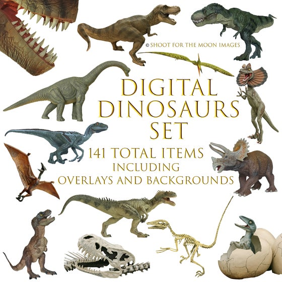 Image of Digital Dinosaurs Set