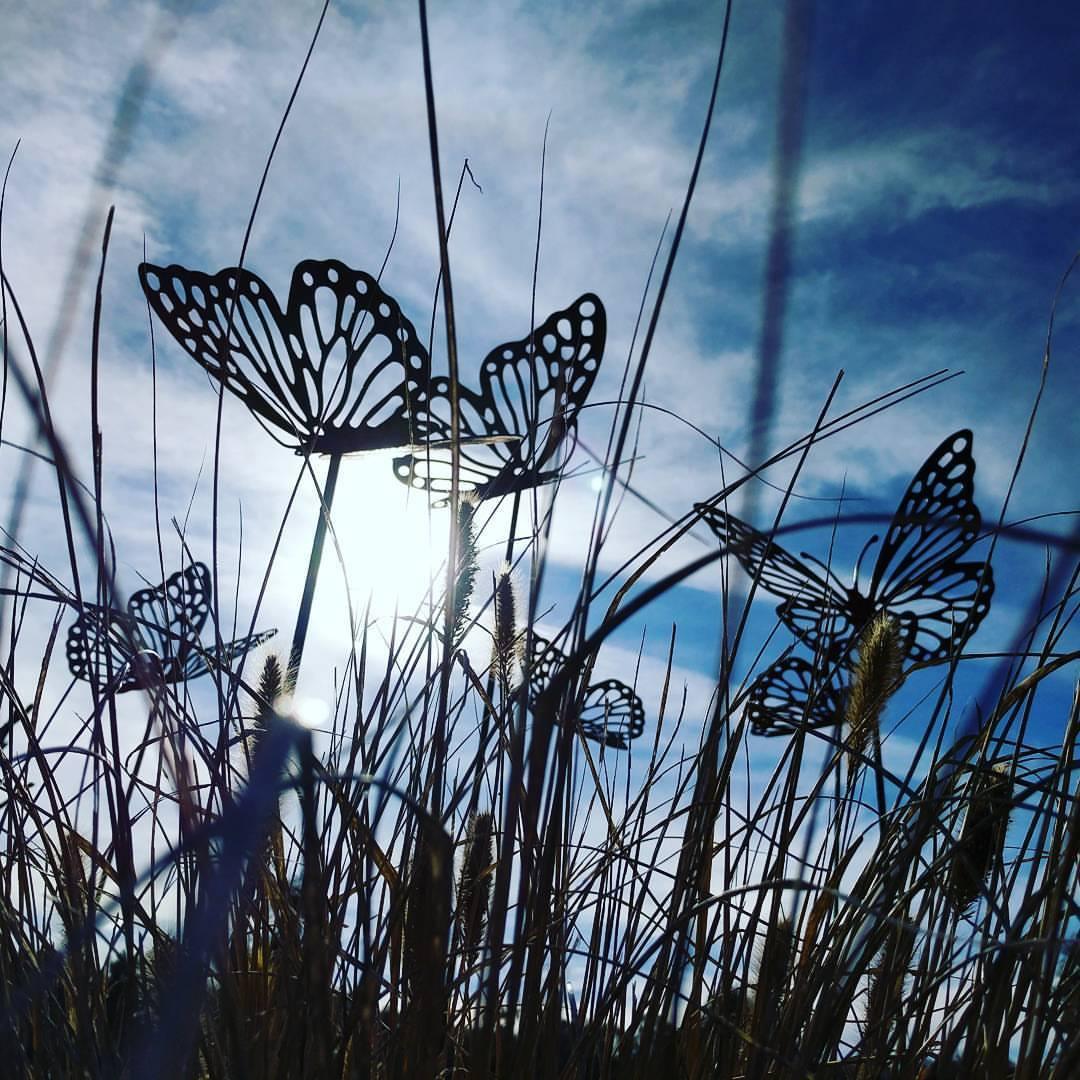 Butterflies on Stakes - Medium/Large  ★