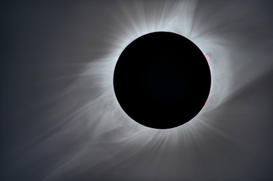 Image of Corona - Eclipse 2017 Totality