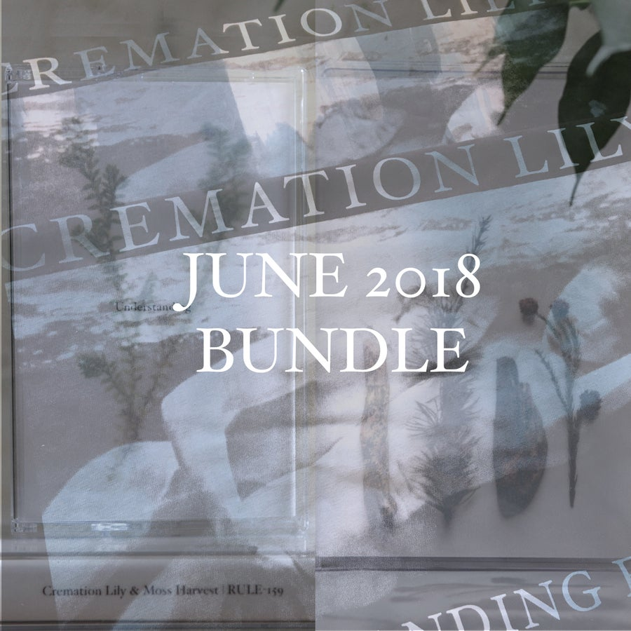 Image of JUNE 2018 BUNDLE