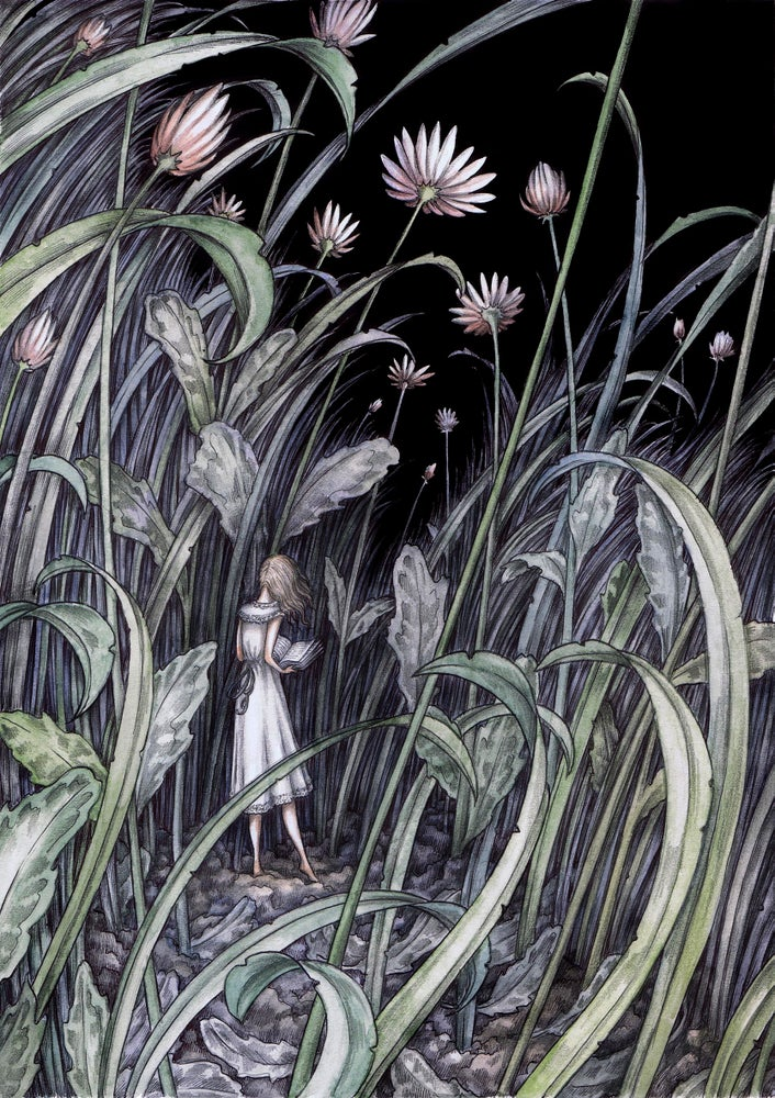 Image of 'The Flowerbed' by Adam Oehlers