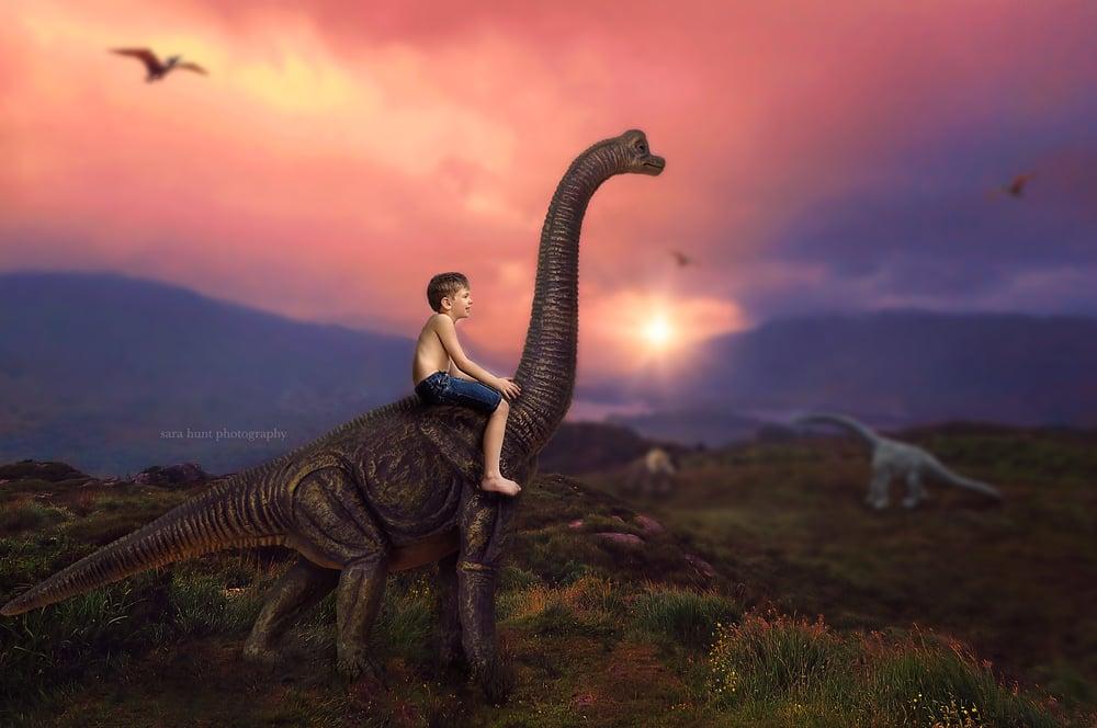 Image of Digital Dinosaurs Set