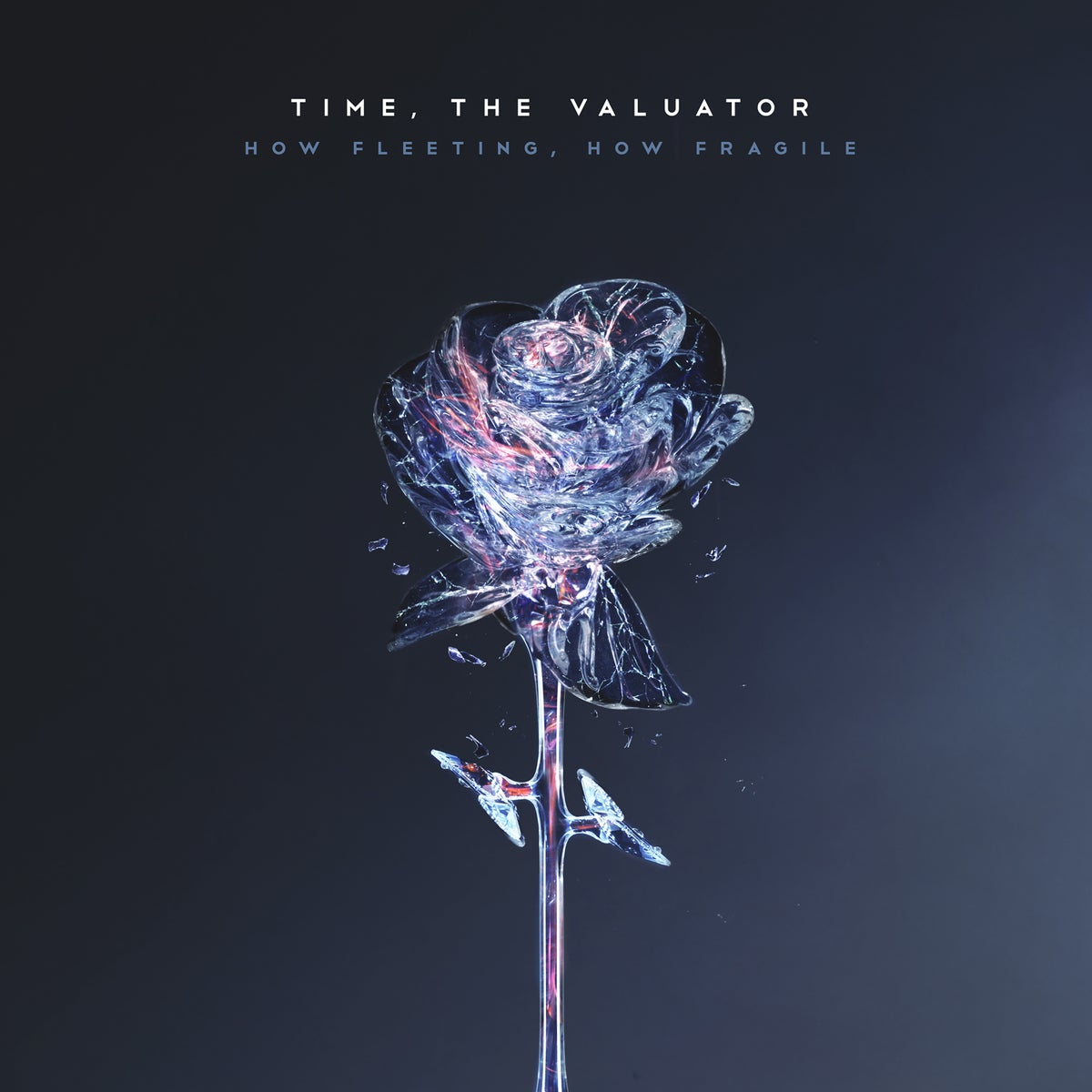 "Image of Time, The Valuator ""How Fleeting, How Fragile"" CD"