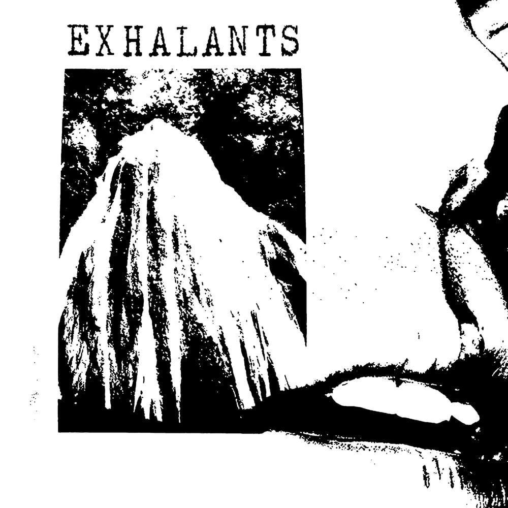 "Image of exhalants ""s/t"""