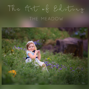 Image of The Art of Editing - The Meadow